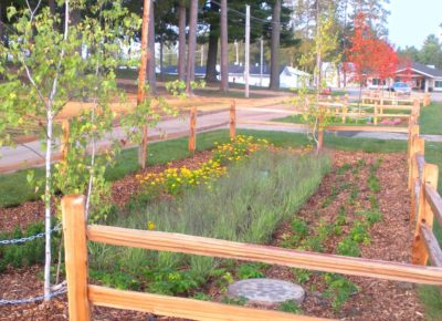 Itasca City Fair Rain Gardens